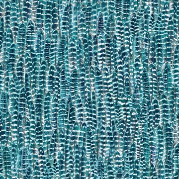 Picture of Identity Teal Feathers Wallpaper