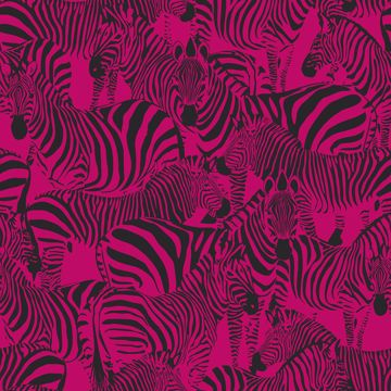Picture of Jemima Pink Zebra Wallpaper