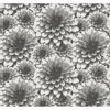 Picture of Umbra Charcoal Floral Wallpaper