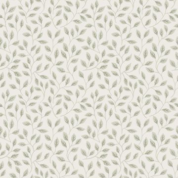 Picture of Posey Light Green Vines Wallpaper