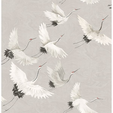 Picture of Windsong Grey Bird Wallpaper