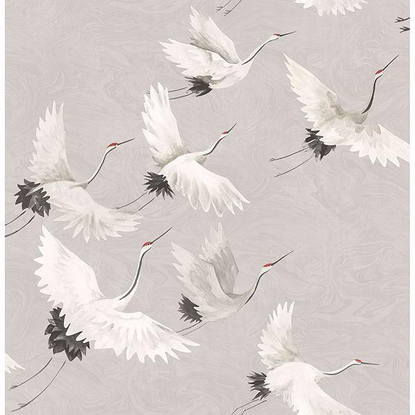 Picture of Windsong Grey Bird Wallpaper