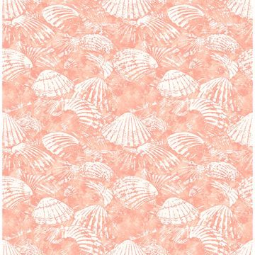 Picture of Surfside Coral Shells Wallpaper