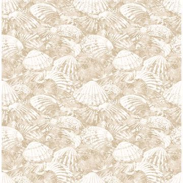 Picture of Surfside Beige Shells Wallpaper