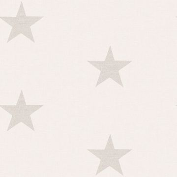 Picture of McGraw Grey Stars Wallpaper