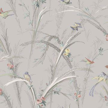 Picture of Meadowlark Grey Botanical Wallpaper
