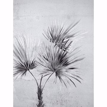 Picture of Durango Palm Greyscale Wall Mural
