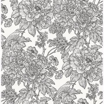 Picture of Black & White Sudbury Peel and Stick Wallpaper