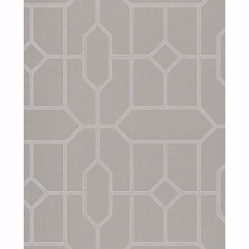 Picture of Johan Taupe Trellis Wallpaper
