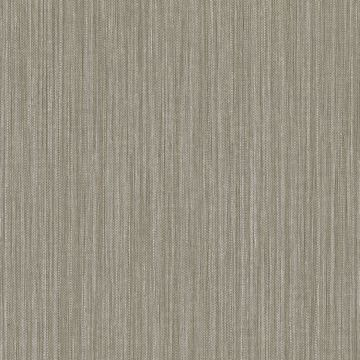 Picture of Derrie Taupe Distressed Texture Wallpaper