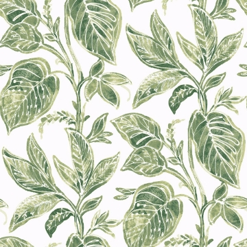 Picture of Mangrove Green Botanical Wallpaper