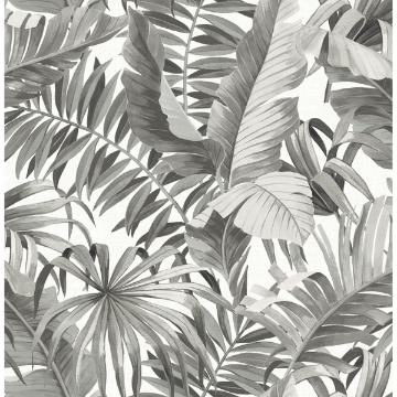 Picture of Alfresco Grey Tropical Palm Wallpaper