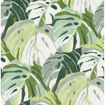 Picture of Samara Green Monstera Leaf Wallpaper