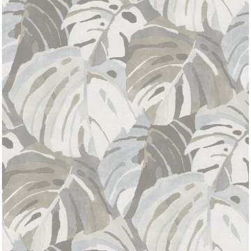 Picture of Samara Stone Monstera Leaf Wallpaper