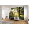 Picture of Golden Moment Wall Mural