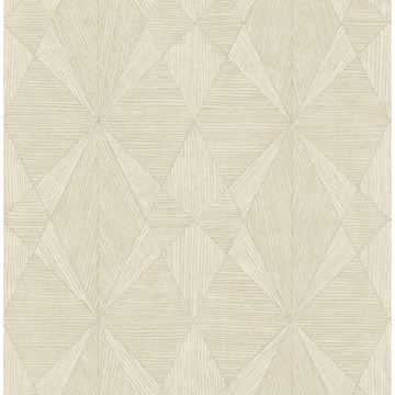 Picture of Intrinsic Bone Textured Geometric Wallpaper