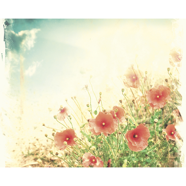 Picture of Sepia Flowers Wall Mural