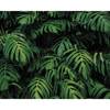 Picture of Forest Plant Wall Mural