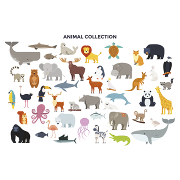 Picture of Animal Collection Wall Mural