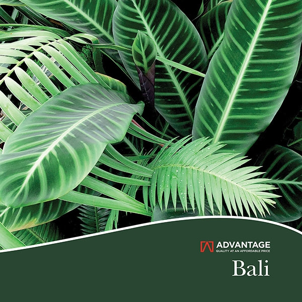 Picture for category Bali by Advantage