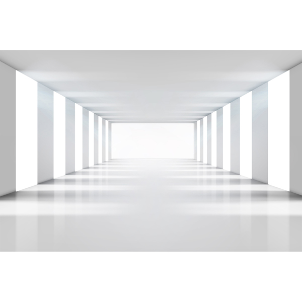 Picture of White Corridor Wall Mural