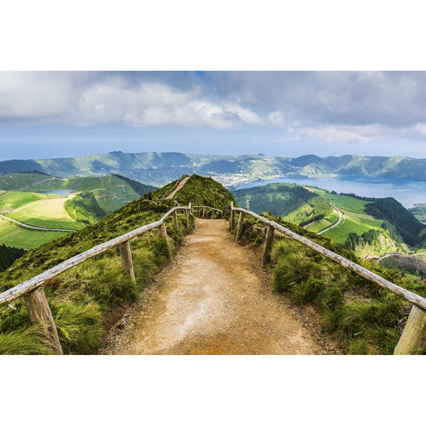 Picture of Walking Path Wall Mural