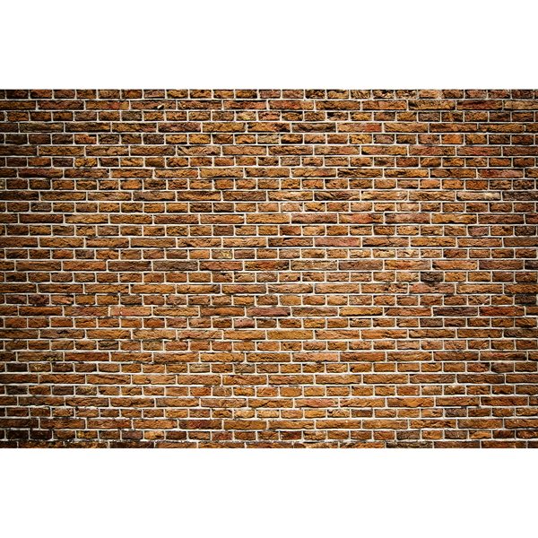 Picture of Old Brick Wall Mural