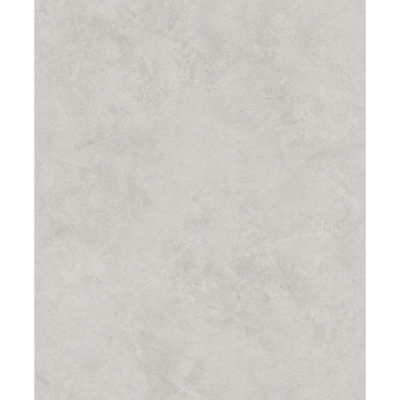 Picture of Escher Light Grey Plaster Wallpaper