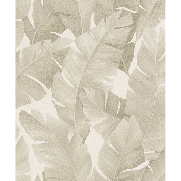 Picture of Attalea Beige Palm Leaf Wallpaper