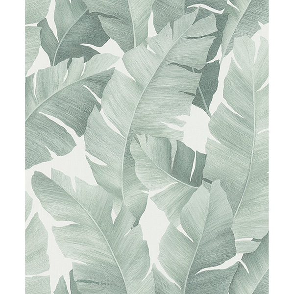 Picture of Attalea Green Palm Leaf Wallpaper