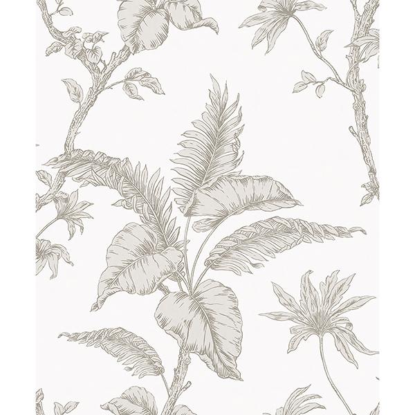 Picture of Cival White Fern Trail Wallpaper