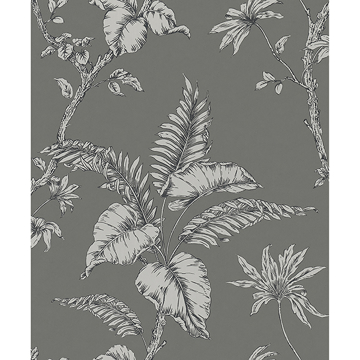 Picture of Cival Grey Fern Trail Wallpaper