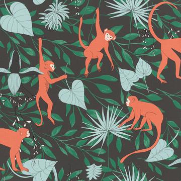 Picture of Langur Black Monkey Troop Wallpaper