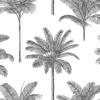 Picture of Taj Charcoal Palm Trees Wallpaper