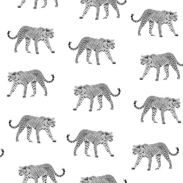 Picture of Prowl White Jaguars Wallpaper