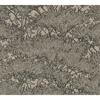 Picture of Hornbeam Brown Tree Wallpaper