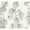 Picture of Ayutla Black Tropical Frond Wallpaper