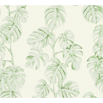 Picture of Ayutla Green Tropical Frond Wallpaper
