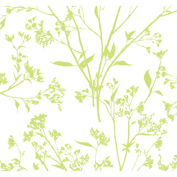 Picture of Southport Chartreuse Delicate Branches Wallpaper