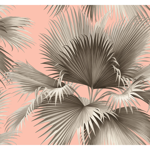 Picture of Summer Palm Blush Tropical Wallpaper