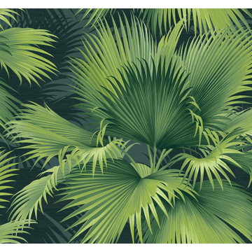 Picture of Summer Palm Dark Green Tropical Wallpaper