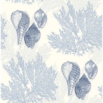 Picture of Nauset Blue Seashell Shores Wallpaper
