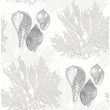 Picture of Nauset Cream Seashell Shores Wallpaper