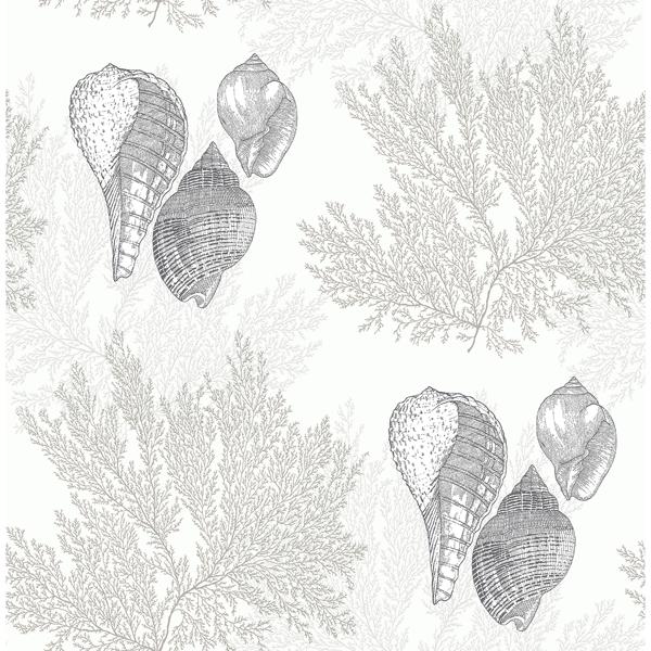 Picture of Nauset Cream Seashell Shores Wallpaper
