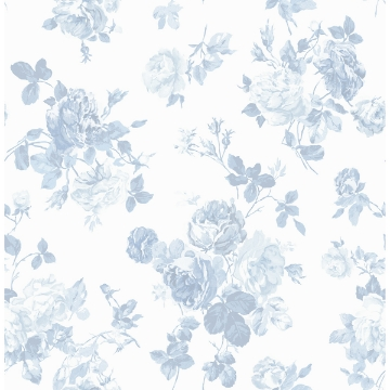 Picture of Everblooming Rosettes Sky Blue Cabbage Rose Bouquets Wallpaper