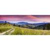 Picture of Blooming Hills Wall Mural