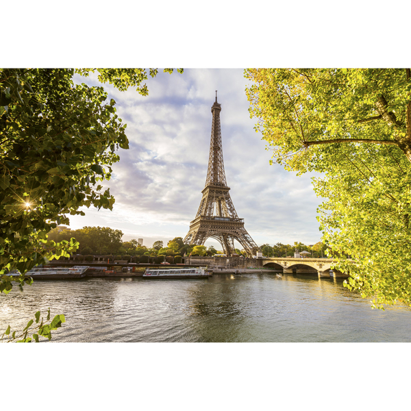 Picture of Seine In Paris Wall Mural