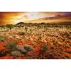 Picture of Australian Landscape Wall Mural