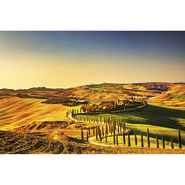 Picture of Tuscany Wall Mural