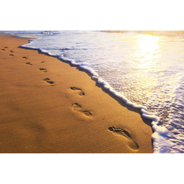 Picture of Footsteps Wall Mural